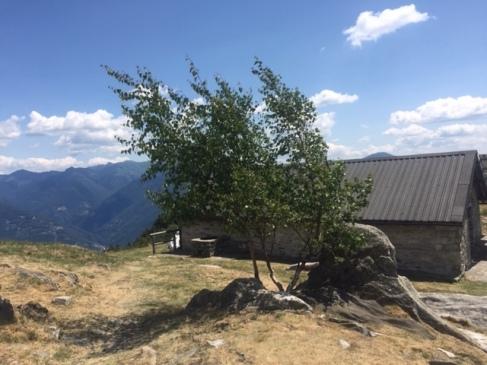 albero capanna Mognone