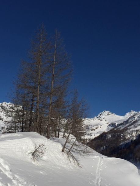 alpe devero neve
