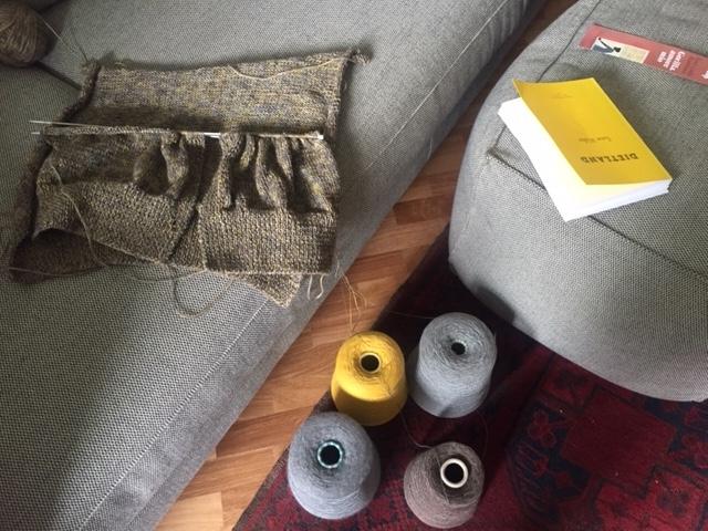 maglia e libro